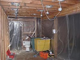 Mold Remediation | Mold Removal | Portland OR Mold Investigators
